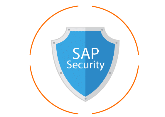 What is SAP Security in 2018?
